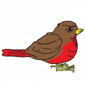 stock photo of robin bird  - robin bird cartoon illustration - JPG