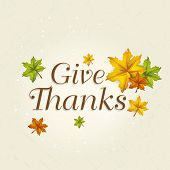 pic of give thanks  - Colorful maples leaves and stylish text Give Thanks - JPG