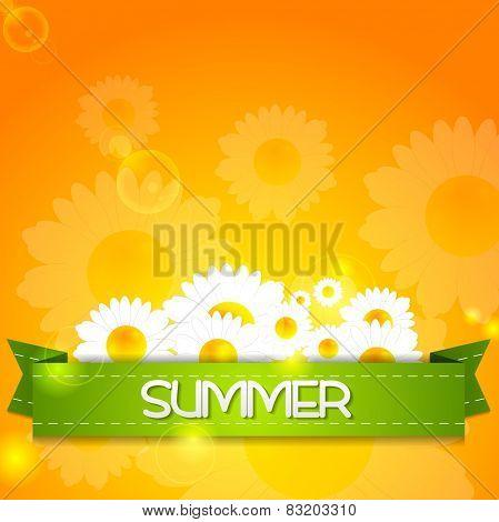 Summer design. Camomiles and ribbon on sunshine backdrop