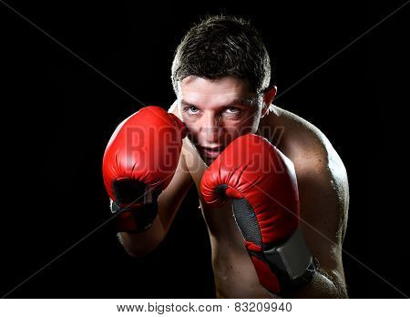 Young Angry Fighter Man Boxing With Red Fighting Gloves In Boxer Stance