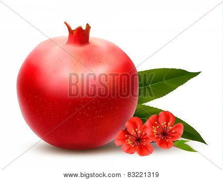 Juicy pomegranate with leaves. Vector