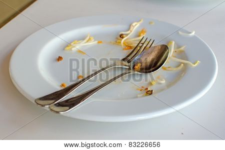 Empty Dish After Food On The Table