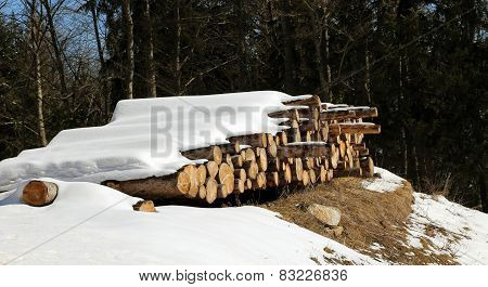 Pile Of Logs Cut In The Mountains Under The Snow