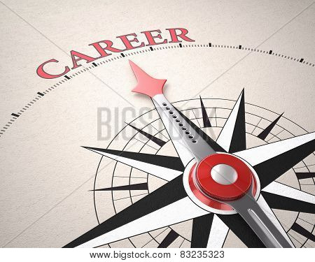 Direction Of Career