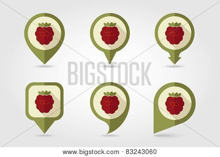 Raspberry Mapping Pins Icons