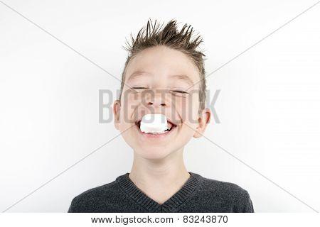 Portrait of cute joyful boy with a marshmallow