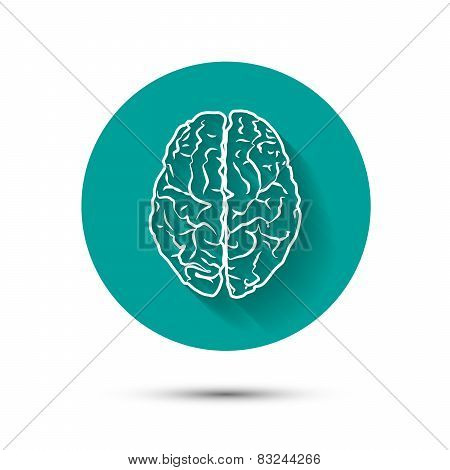 Human brain vector icon flat illustraton with shadow