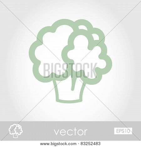 Vector Cauliflower Icon