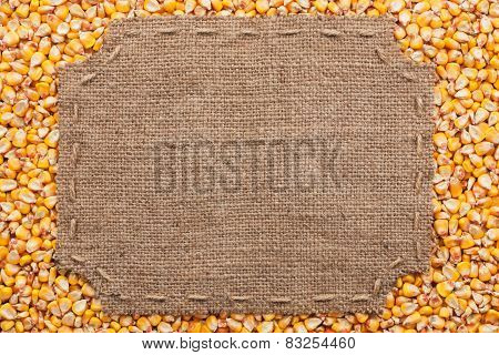 Figured Frame With Burlap And Stitches With  Place For Your Text Lying  On Corn Grains