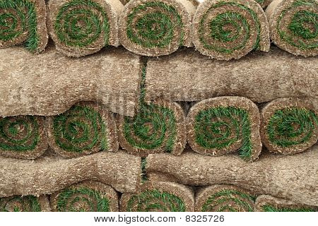 Rolls of Sod