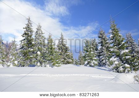 Beautiful winter mountainside landscape