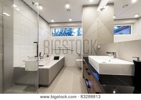 Modern Luxury Bathroom With Bath