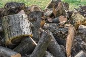 foto of wood pieces  - Trunk of tree torn to pieces with an ax - JPG