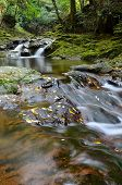 picture of upstream  - We have to shoot the landscape of Japan - JPG