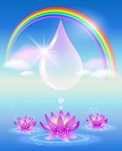 picture of water lilies  - Rainbow water drop clouds and lilies - JPG