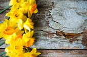 stock photo of jonquils  - Yellow daffodill flower on the old wooden table - JPG