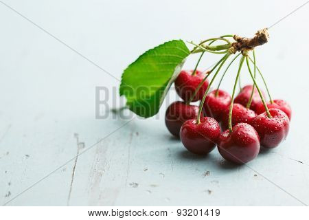 Fresh picked cherries with stems and water droplets