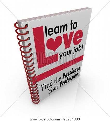 Learn to Love Your Job as a how to manual or instruction book for finding satisfaction and fulfillment in your work or career