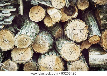 Chopped Wood In The Farm