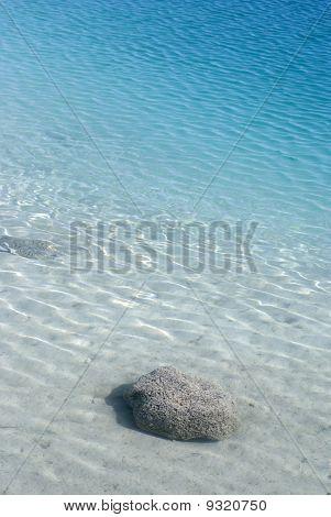 Stromatolite Reef Cuatro Cienegas Mexico