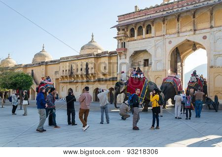 Jaipur, India - December 29, 2014: Tourists Enjoy Elephant Ride In The Amber Fort.