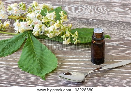 Bach Flower Remedies Of White Chestnut