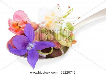 Bach Flowers On A Spoon