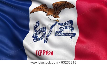 US state flag of Iowa with great detail waving in the wind.