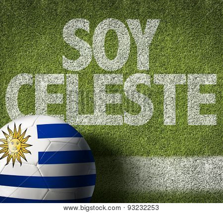 Soccer field with the text: I am Celeste (in Spanish)
