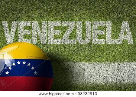 Soccer field with the text: Venezuela