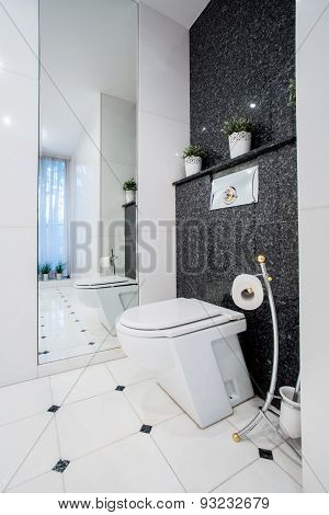 Vertical View Of Toilet Interior