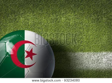 Algeria ball on green grass background