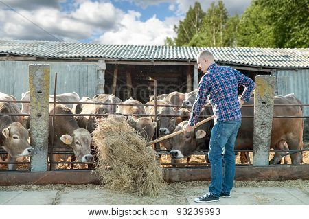 Male rancher in a farm