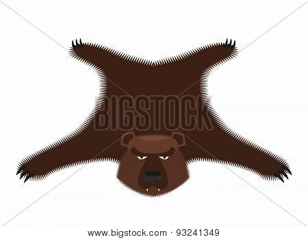 Bear pelt. Big brown bear Grizzly hide. Hunting trophy. Vector illustration