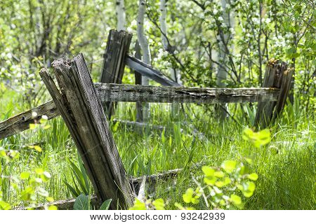 Aged Wooden Fence