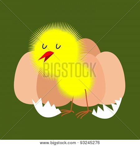 Egg and chicken. Furry chick hatched from an egg. Vector illustration.
