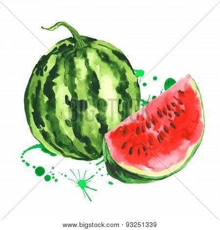 Watercolor watermelon, summer hand drawn fruit