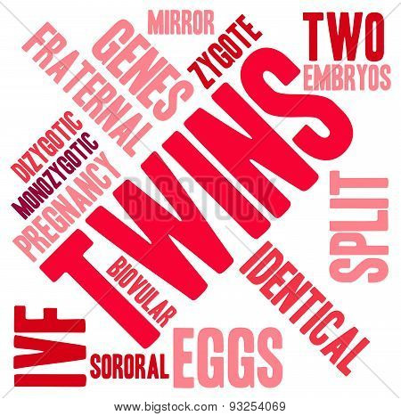 Twins Word Cloud