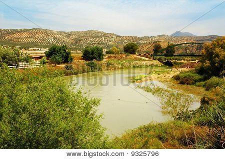 Genil River