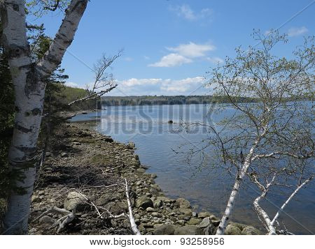 Penobscot River and Tidal Basin near Fort Point State Park in Maine