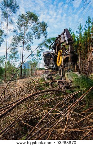 Forest harvesting equipment