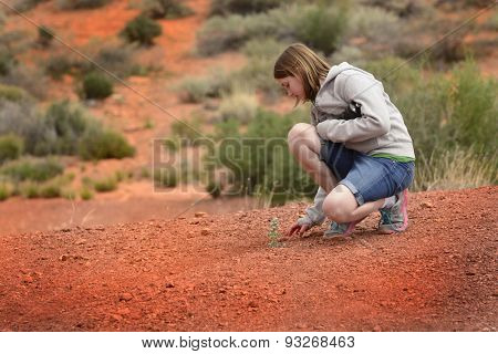 A single green plant in the hot desert sand heat with Girl
