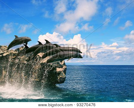 Flock Of Dolphin Jumping Through Sea Water And Floating Mid Air Against Beautiful Cloudy Day Over Na