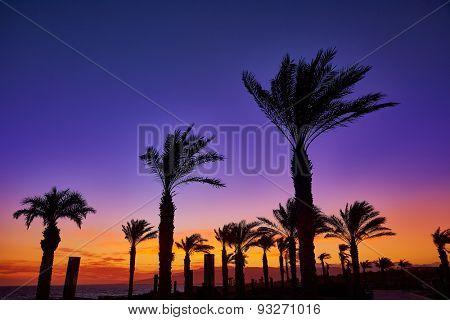 Almeria Cabo de Gata sunset in Retamar beach at Spain