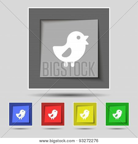Chicken, Bird Icon Sign On Original Five Colored Buttons. Vector