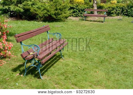 Two Benches In Park