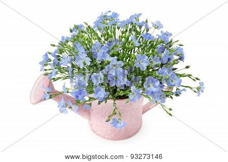Flax Flowers In A Watering Can
