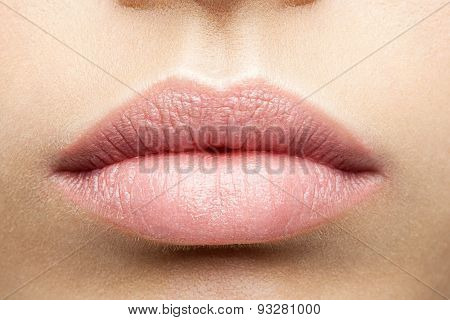 Perfect Natural Full Lips Close-up