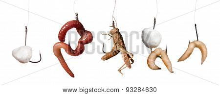 Set Of Baits On The Hook Isolated On White Background