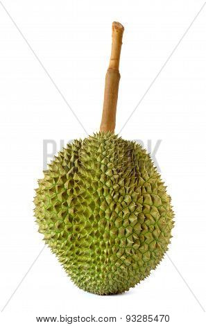 King Of Fruits, Durian Long Stalk, Isolated On White Background